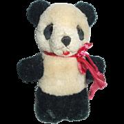 Sweet Old Miniature Panda Bear