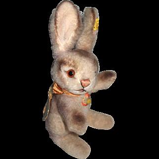 Rare 50's Steiff Plush Bunny Rabbit Smaller Size Original Tags, Including Dralon Tag