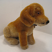 Early Sitting Steiff Bazi Puppy Dog With ID