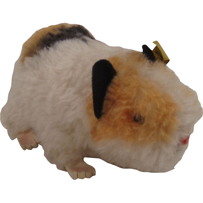 Steiff's Largest Swinny Guinea Pig With All IDs From