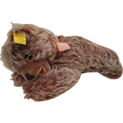Steiff's Smallest Floppy Zotty Bear With All IDs
