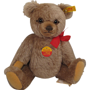 Steiff's Medium Sized Brummbaer Teddy Bear With All IDs