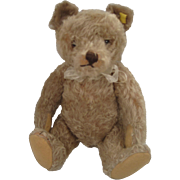 Steiff's Larger And Delightful Caramel Colored Original Teddy Bear With ID
