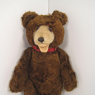 Steiff's Completely Irresistible Early 1950's Brown Mohair Teddy Baby Bear
