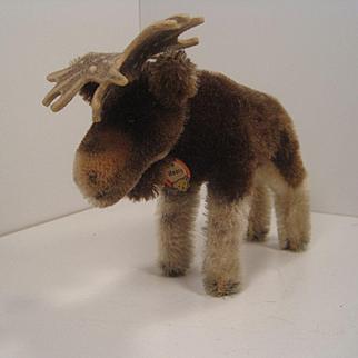 Steiff's Smallest Moosy Moose With ID