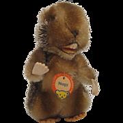 Steiff's Medium Sized Nagy Beaver With All IDs
