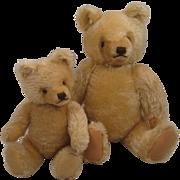"A Pair Of Blonde Steiff ""Mask"" Style Original Teddy Bears"
