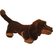 Steiff's Plush Waldi Dog With All IDs