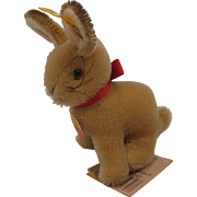 Steiff's Mohair Sitting Timmy Rabbit With All IDs
