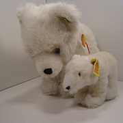 Two Steiff White Plush Polar Bears With All IDs