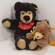 Two Soft Plush Teddy Bears With All IDs