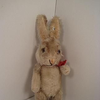 Steiff's Almost Smallest Niki Rabbit With ID