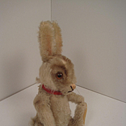 Steiff's Almost Smallest Niki Rabbit With ID