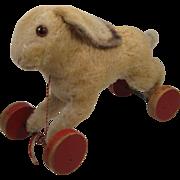 Steiff's Largest Prewar Mohair Rabbit On Eccentric Wheels With ID