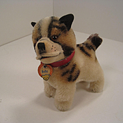 Steiff's Smallest Postwar Bully Bulldog With ID