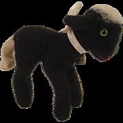 Steiff's Smallest, Rare Green Eyed Lamby Lamb