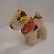 Steiff's Almost Smallest Foxy Fox Terrier With All IDs
