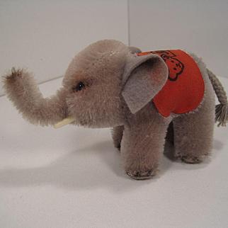 Steiff's Smallest Postwar Mohair Standing Elephant