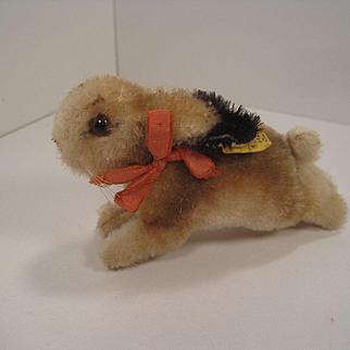 Steiff's Smallest Hoppy Rabbit With IDs