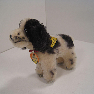 Steiff's Smallest Black and White Standing Cockie Cocker Spaniel With All IDs