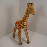 Steiff's Medium Sized Mohair Giraffe With IDs