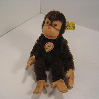 Steiff's Early Postwar Almost Smallest Jocko Monkey With All IDs