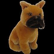 Steiff's Rare Larger Sitting Mohair Boxer Dog