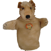 Steiff's Foxy the Foxterrier Mohair Hand Puppet With All IDs
