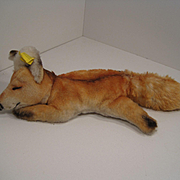 Steiff's Sweet and Rare Sleeping Xorry Fox With All IDs