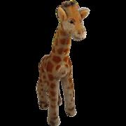 Steiff's Smaller Mohair Giraffe