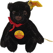 Steiff's Smaller Sized Black Original Teddy Bear With All IDs