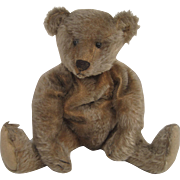 Steiff's Adorable and All Original Very Early Dark Blonde Mohair Teddy Bear With Blank Button
