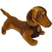 Steiff's Almost Largest Hexie Doxie Dog With All IDs And More From FAO Schwarz