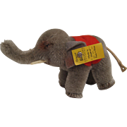 Steiff's Smallest Mohair Elephant With All IDs