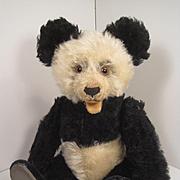 Steiff's Medium Sized Mohair Panda Bear With ID