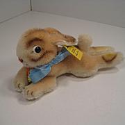 Steiff's Medium Sized Lying Rabbit With All IDs