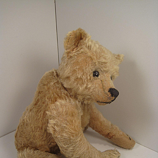 Steiff's Large, Fantastic, and Very Early  Blonde Teddy Bear