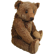 Steiff's Lovely And Extremely Desirable Early Cinnamon Colored Mohair Teddy Bear With ID