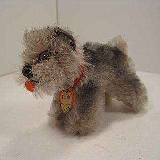 Steiff's Smallest Tessie Schnauzer With ID