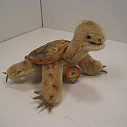 Steiff's Smallest Slo Turtle With 2 IDs