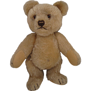 Steiff's Medium Sized Jackie Teddy Bear With ID