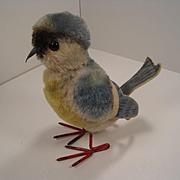 Steiff's Largest Mohair Blue Tit Bird With IDs