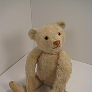 Steiff's Irresistible Late 1920's Era Small White Teddy Bear With ID
