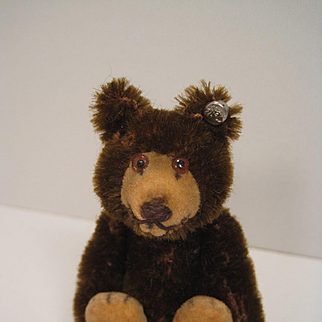 Steiff's Smallest and Earliest Post War Brown Mohair Teddy Baby With IDs