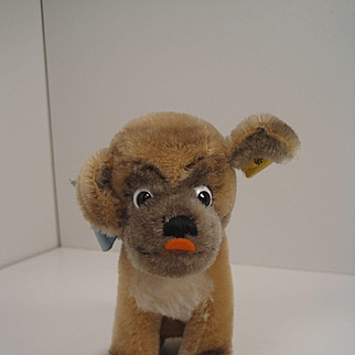 Steiff's Smallest Mohair Mopsy Pug Dog With IDs