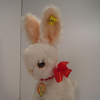 Steiff's White Cosy Issy Rabbit With All IDs