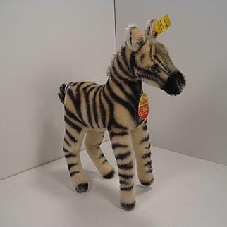 Steiff's Medium Sized Mohair Zebra With All IDs