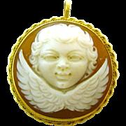 14K Gold Cherub Shell Cameo Pin Pendant