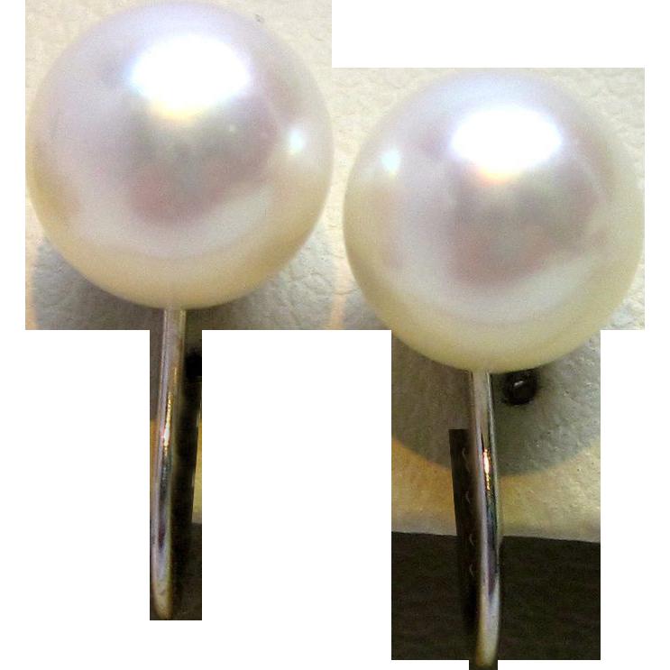 1950s 14K White Gold Screw Back Pearl Earrings