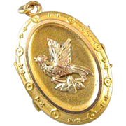 Antique mid- Victorian Etruscan tri color gold filled ornate bird dove peace olive branch locket
